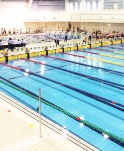 黒人の水泳競技選手がいないのはなぜ?その意外な理由とは?