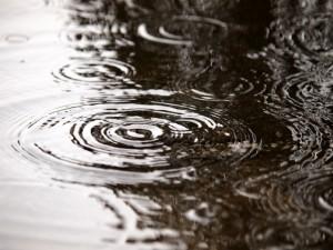 菜種梅雨とは?意味と使い方をわかりやすく解説します