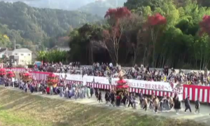 八代妙見祭 2016年の日程と見どころ