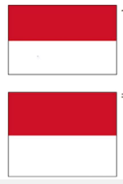 インドネシアの国旗とモナコの国旗は同じ?実は違いがあった!