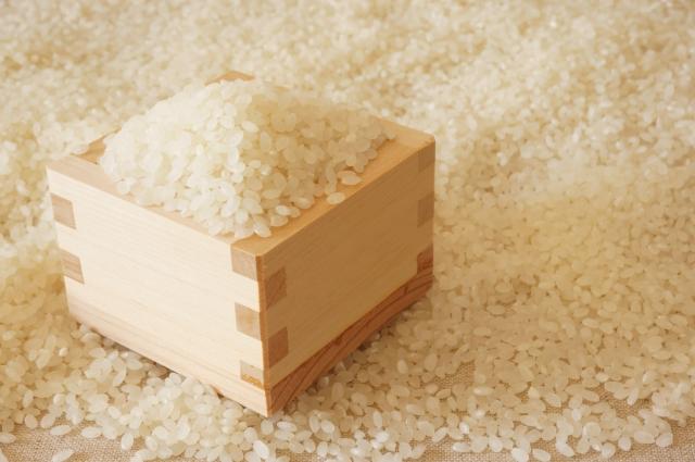 もち米とうるち米の違いは?炊き方や水加減についてもわかりやすく解説します