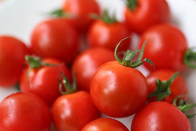 プチトマトとミニトマトの違いは?身体の良い食べ方もわかりやすく解説します